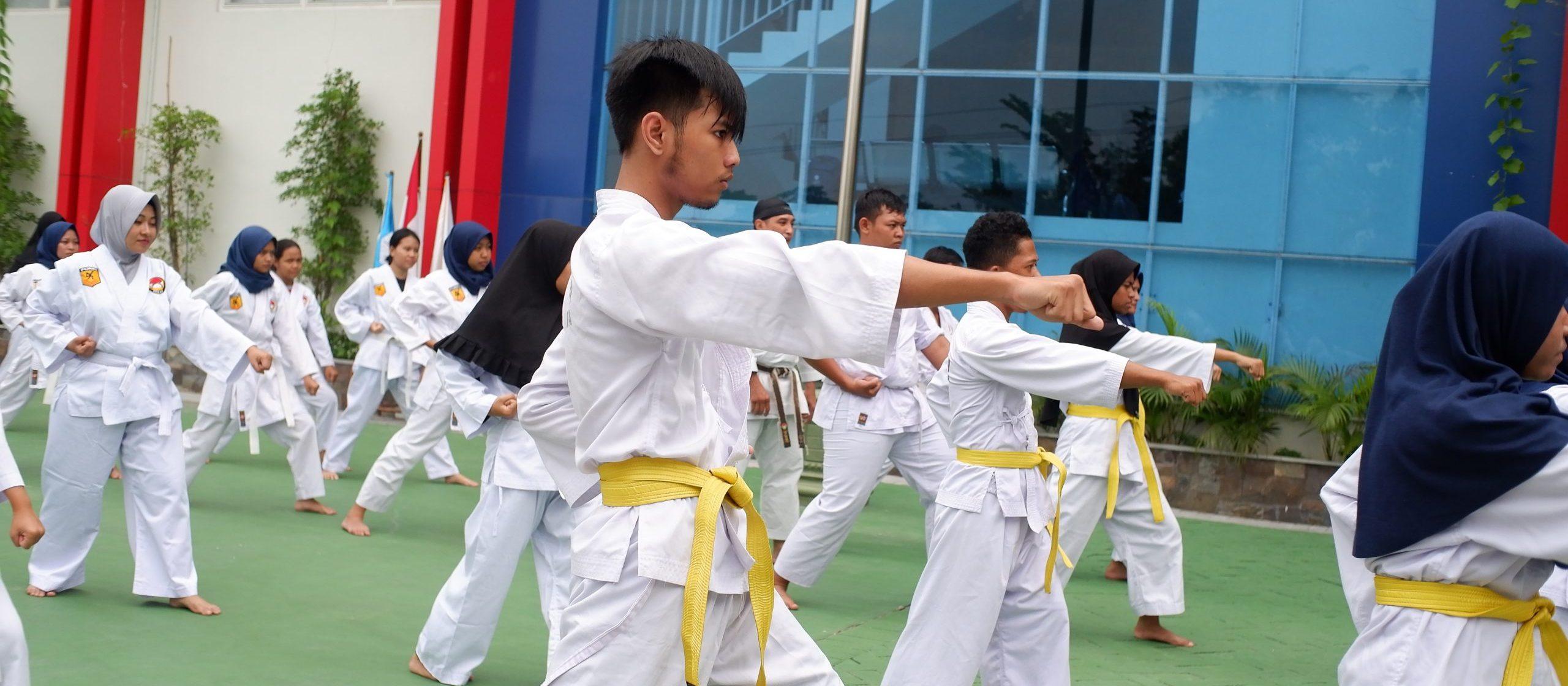 karateka akbara
